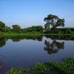 Reflections by Sudipto Sarkar on Visioplanet Photography
