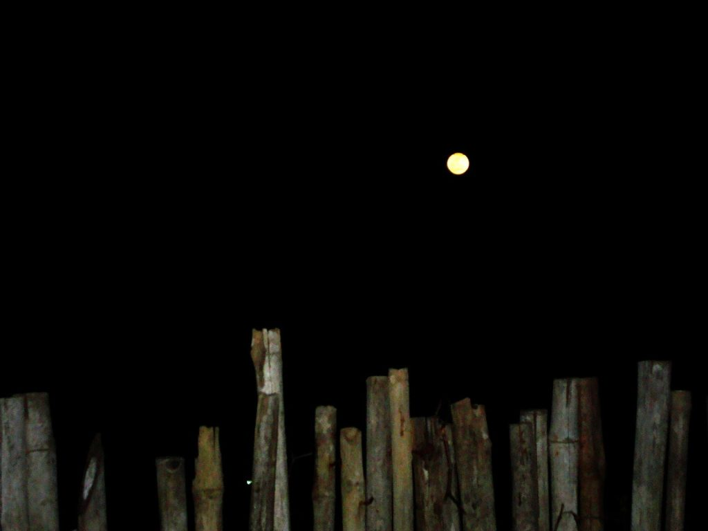 Asking For The Moon by Sudipto Sarkar on Visioplanet