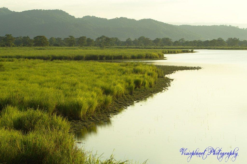 Grasslands by Sudipto Sarkar on Visioplanet